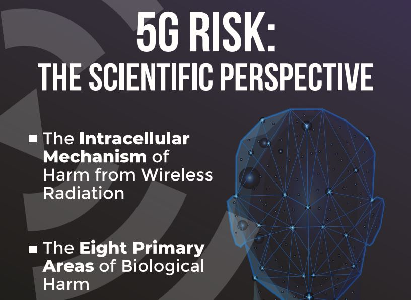 pall 5g risk the scientific perspective